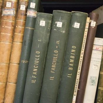 """Libri presso l'archivio della Biblioteca """"Mario Gattullo"""" di Scienze dell'Educazione - Via Filippo Re 6 - Bologna  Anno: 2017"""